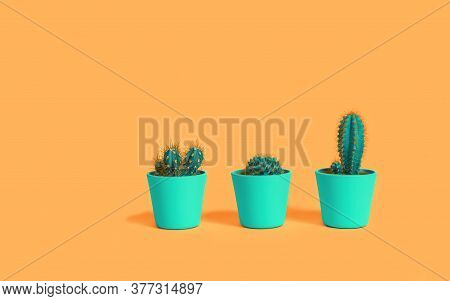 Three Different Cacti In Green Pots On Pastel Terracotta Orange Background. Environment Friendly Sum