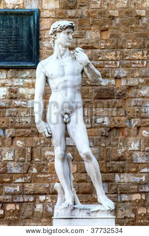 Michelangelo's replica David. Florence, Italy