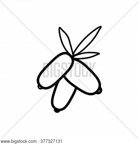 Dogwood Berries Line Icon On A White Background