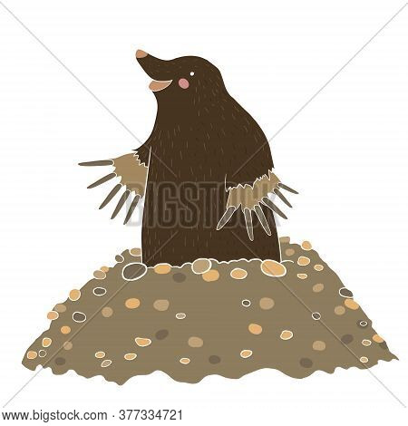 Mole Gets Out Of The Mound Isolated On White