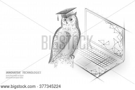 Owl Bird Symbol Of Wise Education. E-learning Distance Concept. Graduate Certificate International G