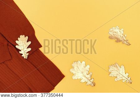 Fashion Sweater Terracotta Color, Cozy Autumn Female Clothing Decorated Golden Oak Leaves On Pastel