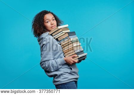 Portrait of content curly-haired black student girl carrying big stack of books against blue background, preparing for exam concept