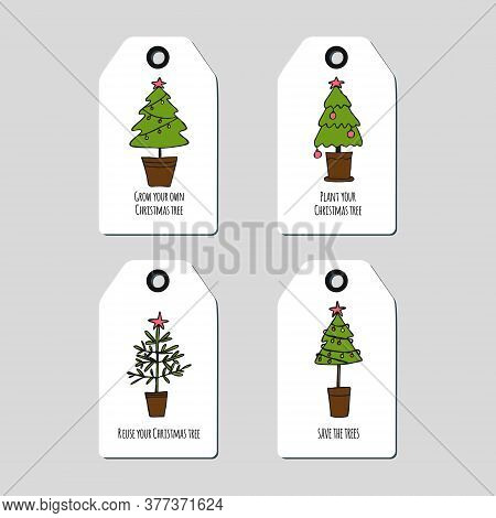 Set Of Tag Template With Christmas Trees In A Flower Pots. Reuse Christmas Tree Design Element For S