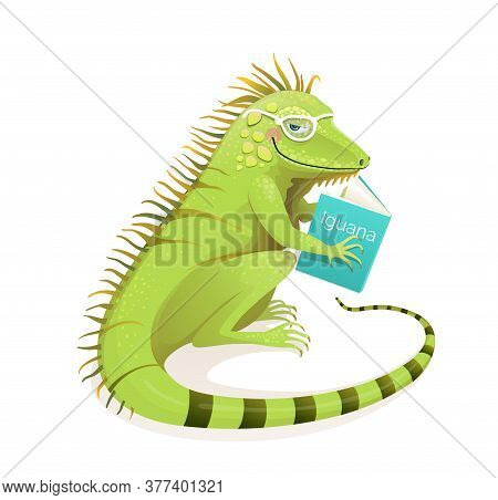 Iguana Lizard Reading A Book, Studying And Education Character Cartoon. Isolated Animal Clipart For
