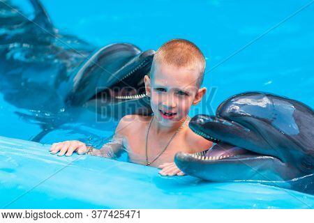Happy Little Boy Swimming With Dolphins In Dolphinarium