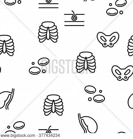 Organs Anatomical Vector Seamless Pattern Thin Line Illustration