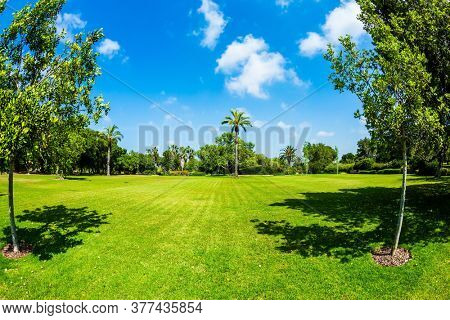 The magnificent Rothschild Botanical Park. Magnificent park on the slopes of Mount Carmel in Israel. Large green grassy meadow in the center of the park. Great walk in a clean well-kept park