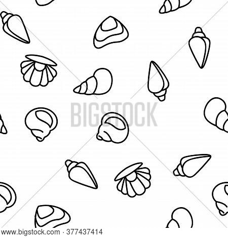 Shell And Marine Conch Vector Seamless Pattern Thin Line Illustration