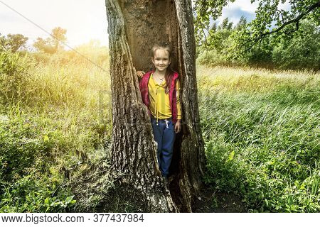 A Girl Poses In The Hollow Of A Large Tree In A Park On A Sunny Summer Day