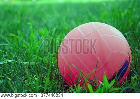 Volleyball Ball Standing On The Grass. Volleyball Ball On Greenery Field In Park
