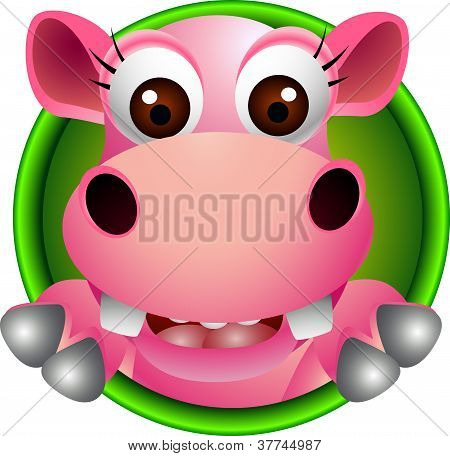cute baby hippo head cartoon