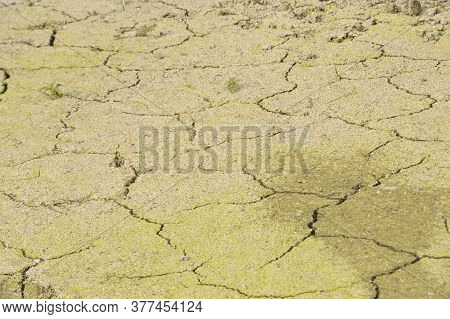 Heat And Dryness In Nature