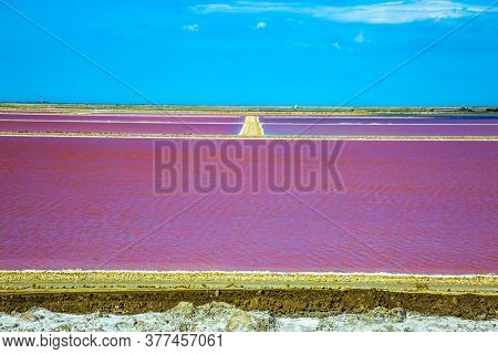 The huge nature reserve includes saltwater and sand dunes - Camargue. The Mediterranean coast of France. Salt production on the seashore. Dark Pink Salt Water Bay.
