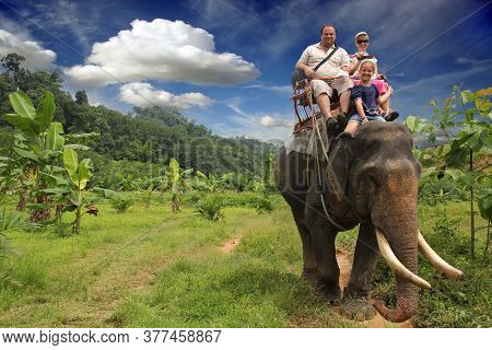 Riding An Elephant. A Young Family With A Child Ride An Elephant On A Background Of Green Jungle And