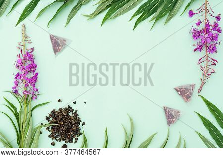Herbal Tea Scattered And In Bags. Dry Fermented Fireweed. Fresh Leaves And Flowers Of Ivan-tea. Bloo