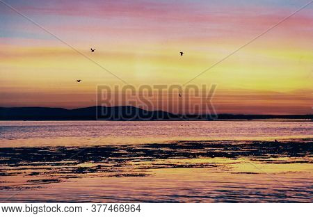 Amazing Sunset With Pink, Yellow And Orange Colors In Lake Titicaca, Bolivia