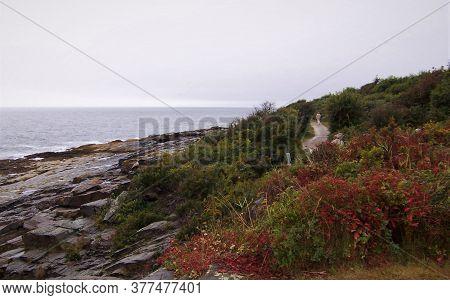 New England Ocean Shoreline With Hidden Path - Maine
