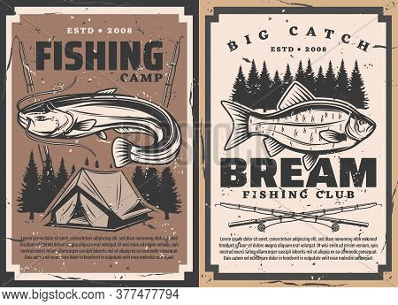 Fish And Fisherman Rods, Vector Fishing Sport. Bream And Catfish Fisherman Catch With Fishing Tackle