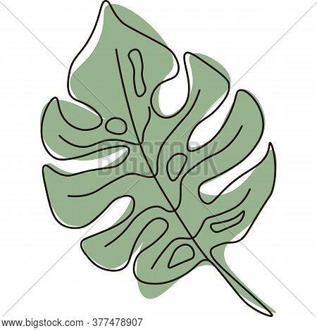 Vector Monstera Leaf Line Art Illustration Exotic Palm Leaves Jungle Tropic Elements, Aloha Collecti
