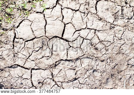 Dried Cracked Earth Black Soil Ground Texture Background. Mosaic Pattern Of Sunny Dried Earth Soil.