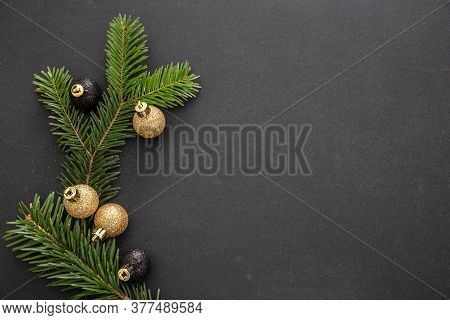 Fir Twig Fresh Against Red Color Background