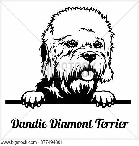 Dandie Dinmont Terrier - Peeking Dogs - Breed Face Head Isolated On White