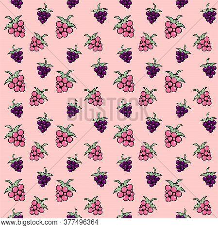 Pink And Purple Berries On A Pink Background. Raspberries, Dewberry, Blackberries And Bramble. Vecto