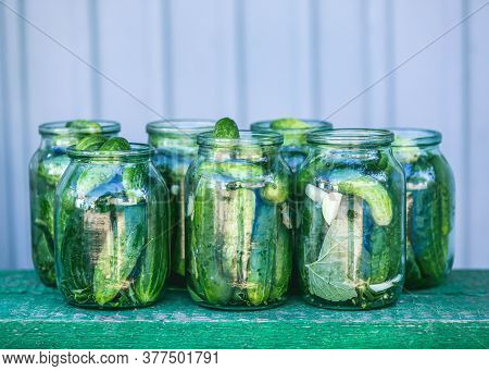 Conservation Of Green Cucumbers, Conservation For The Winter. Cucumbers With Garlic, Salt, Dill. Pic