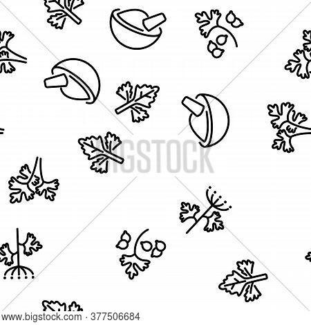 Coriander Herbal Plant Vector Seamless Pattern Thin Line Illustration