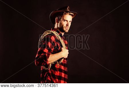 Lasso Tool Of American Cowboy. Lasso Is Used In Rodeos As Part Of Competitive Events. Lasso Can Be T