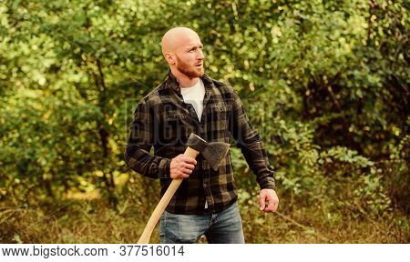 Man Checkered Shirt Use Axe. Brutal And Attractive Male In Forest. Power And Strength. Lumberjack Ca