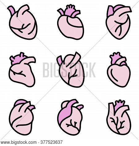 Human Heart Icons Set. Outline Set Of Human Heart Vector Icons Thin Line Color Flat On White