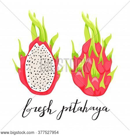 Dragon Fruit Or Pitahaya With Trendy Lettering. Healthy Eating. Exotic Tropical Fruit. Vector Illust