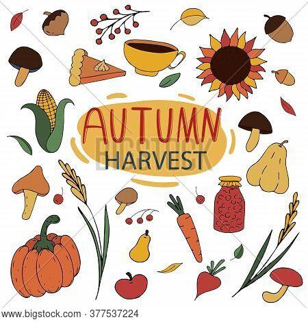 Autumn Colored Doodles - Umbrella, Rain, Corn, Rubber Boots, Sunflower, Mountain Ash, Crop Of Vegeta