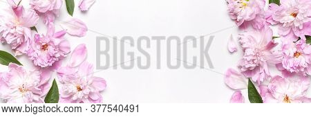 Frame Of Pink Peonies Flowers On Light Background Top View Flat Lay Copy Space. Peonies Flower Petal