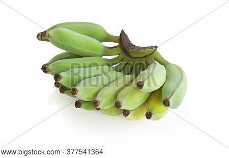 Banana Branch Isolated On White Background, Fruit