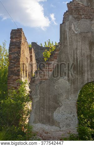 The Ruined Walls Of The Old Catholic Chapel. The Ruins Of An Old Church. Trees Growing On Old Ruins
