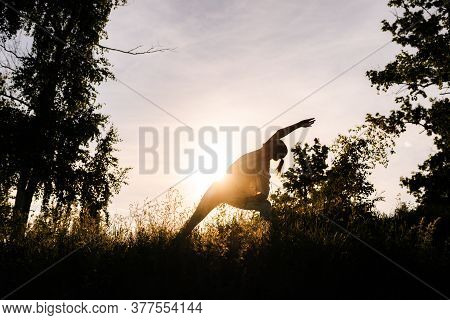 Silhouette Of Unrecognizable Woman Practicing Yoga Asana Pose Of Warrior In Evening At Sunset. Girl