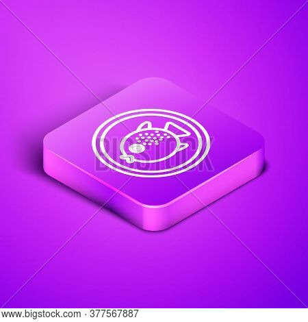 Isometric Line Puffer Fish On A Plate Icon Isolated On Purple Background. Fugu Fish Japanese Puffer