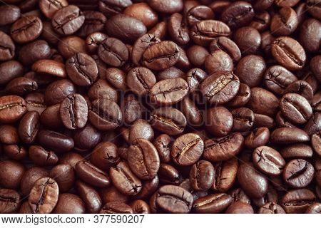 Arabica Coffee Beans Textured Brown Background, Macro Closeup