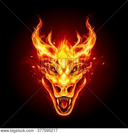 Legendary Fire Dragon Head On The Dark Background. Traditional Chinese Dragon. Fire Creature Logo Fo