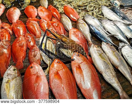 Fish Market Concept. Fish, Shrimps, Prawns And Lobster On A Wooden Table Extreme Closeup.