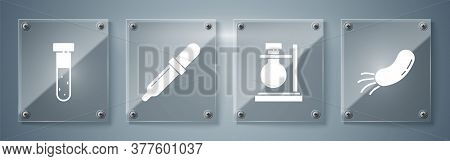 Set Bacteria, Test Tube Flask On Stand, Pipette And Test Tube And Flask Chemical. Square Glass Panel