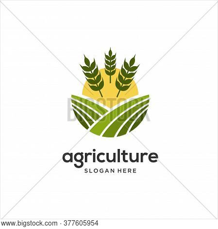 Farm Logo Template, Vector Logo Design For Agriculture, Agronomy, Wheat Farm, Rural Country Farming