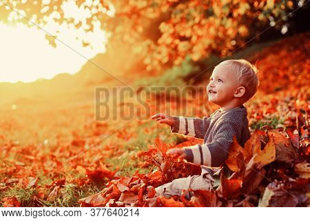 Childhood Memories. Child Autumn Leaves Background. Warm Moments Of Autumn. Toddler Boy Blue Eyes En