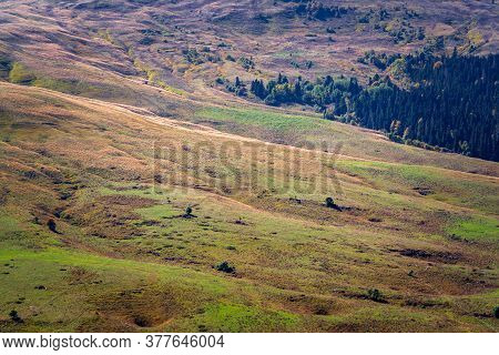 Hilly Surface Of A Mountain Plateau Covered With Grass And Forest