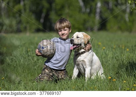 Happy Boy Hugging His Dog Breed Labrador. Best Friends Rest And Have Fun On Vacation, Play With Socc