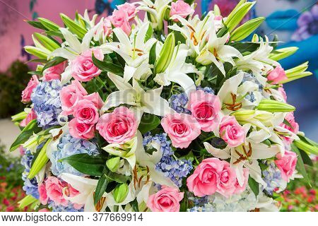 Flowers That Embellish In Weddings And Parties.