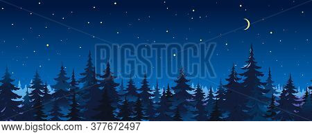 Tops Of Spruce Trees On Night Sky Background, Dark Dense Coniferous Forest At Night, Panorama Of Nig